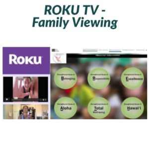 ROKU instructions